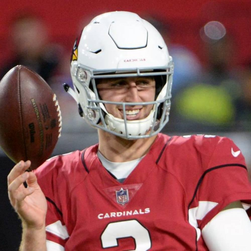 Josh Rosen, Cardinals, Dolphins