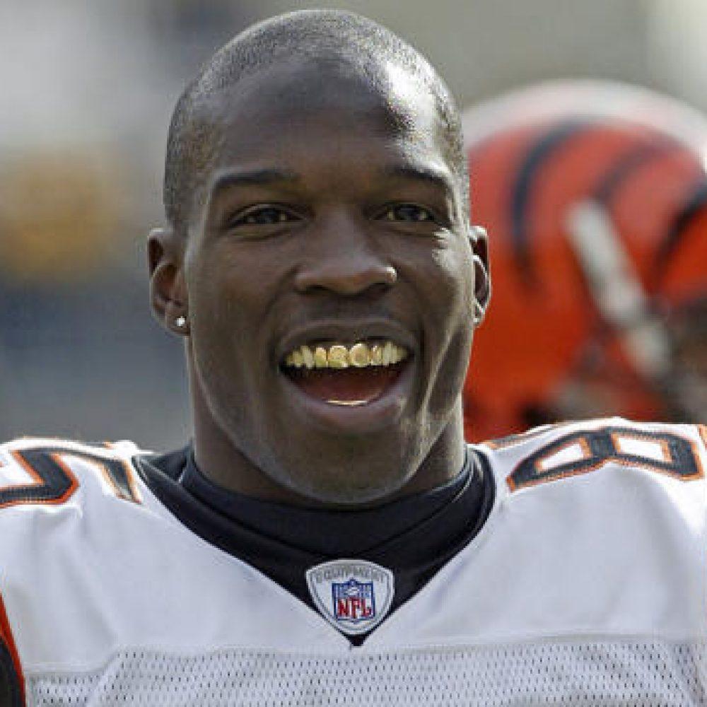 Chad Johnson, Bengals, XFL